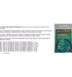 BAS DE LIGNE MAXIMA PAR 2