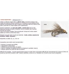 BIRD'S NEST   NYMPHE BILLE