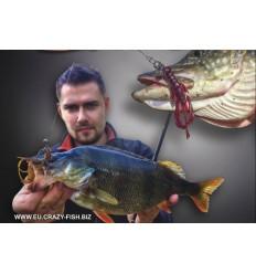 CRAZY FISH NIMBLE  65mm