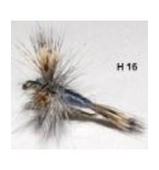 grey wulff (mouche seche)